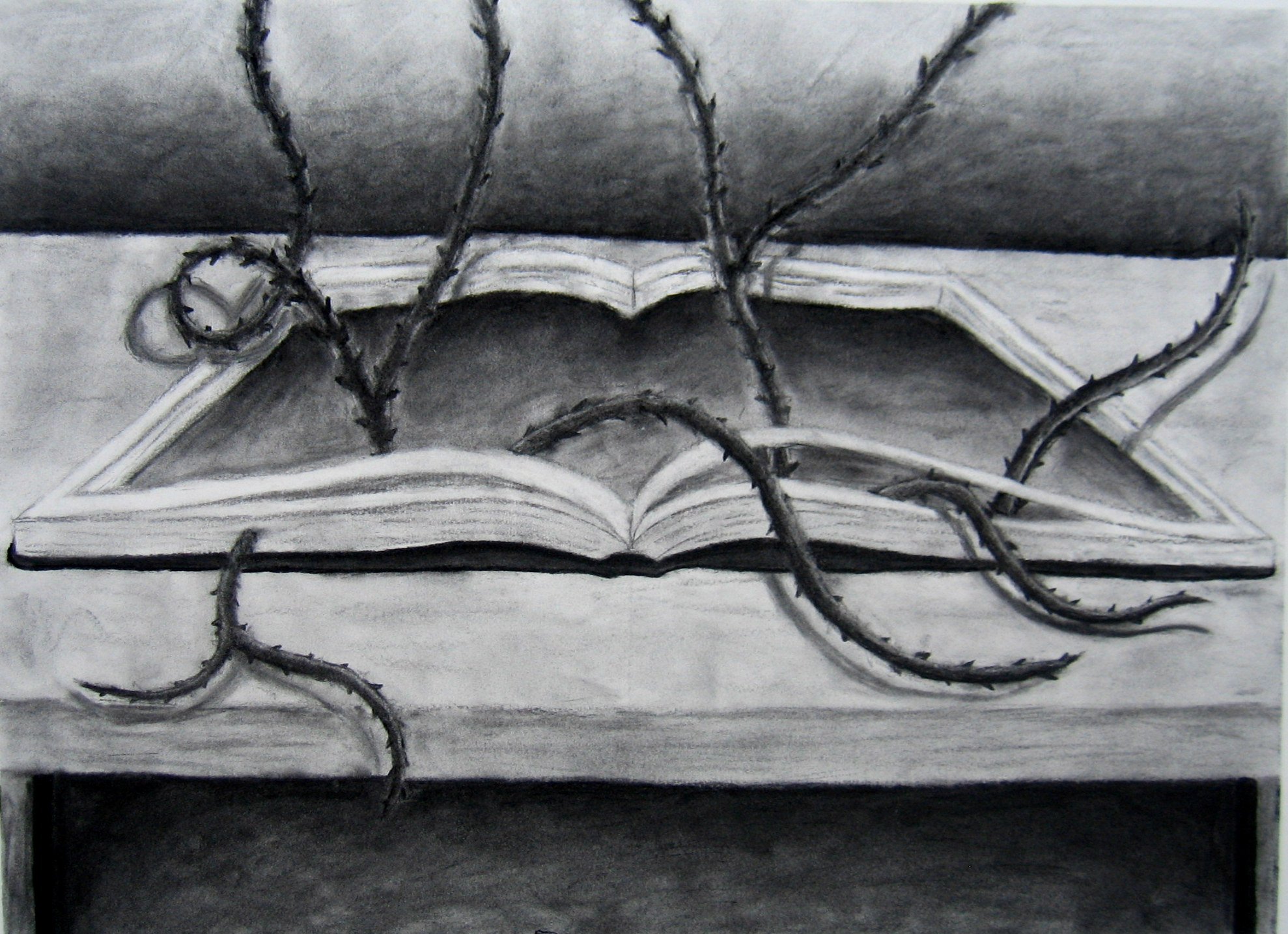 Mia-Curtis-5-8-ART